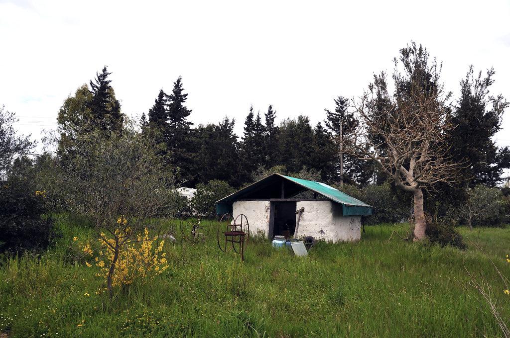 im garten - urupia 2015 (29)