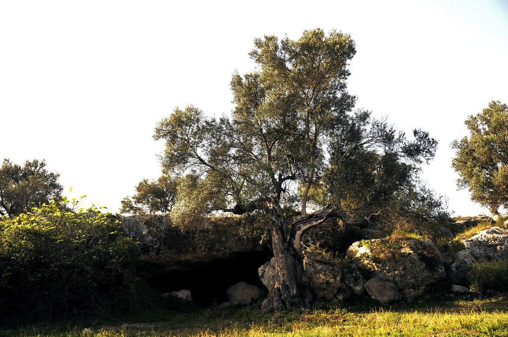 kurz vor grottaglie 2015 (05)