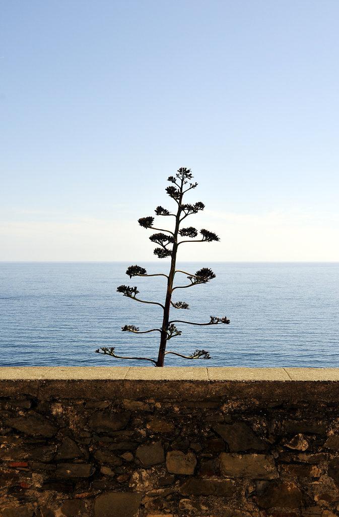 cinque terre - corniglia - schönheit