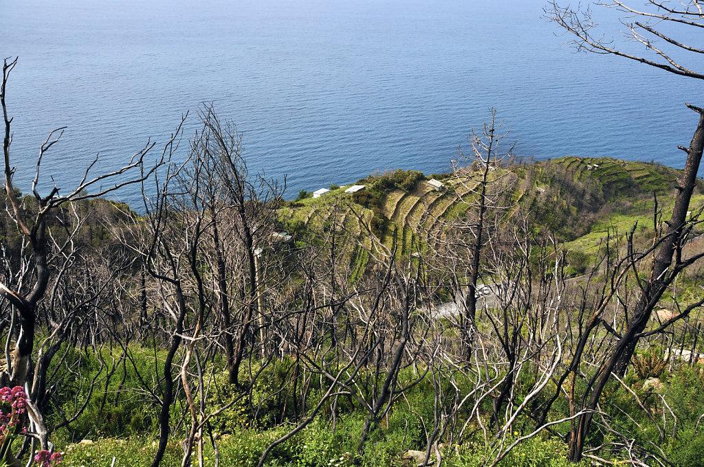 cinque terre - zwischen riomaggiore und porto venere