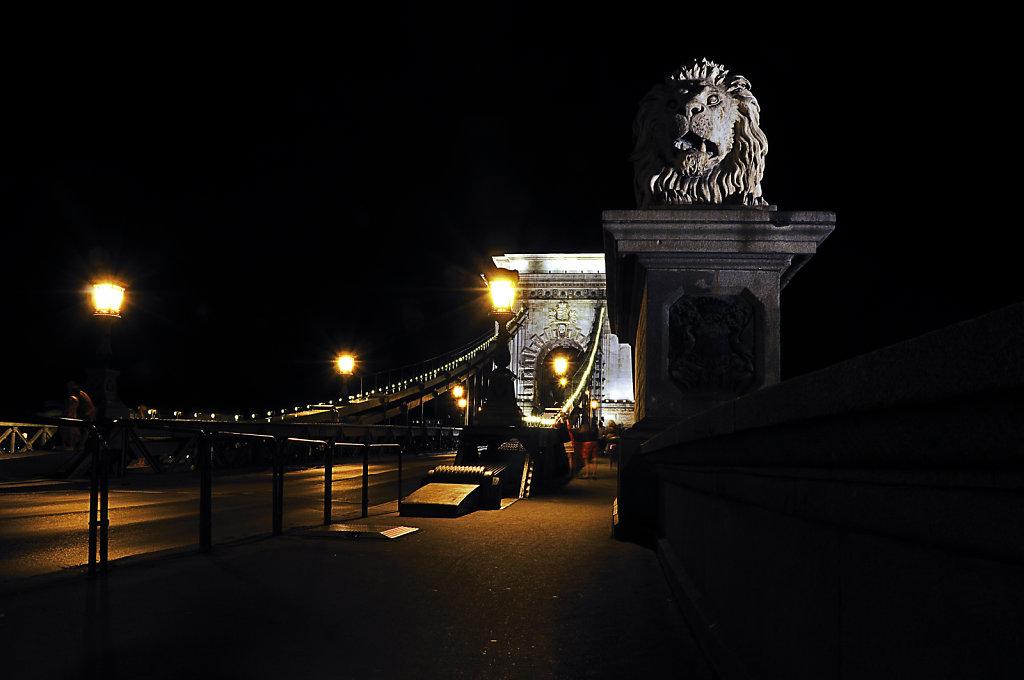 ungarn - budapest - night shots - der löwe