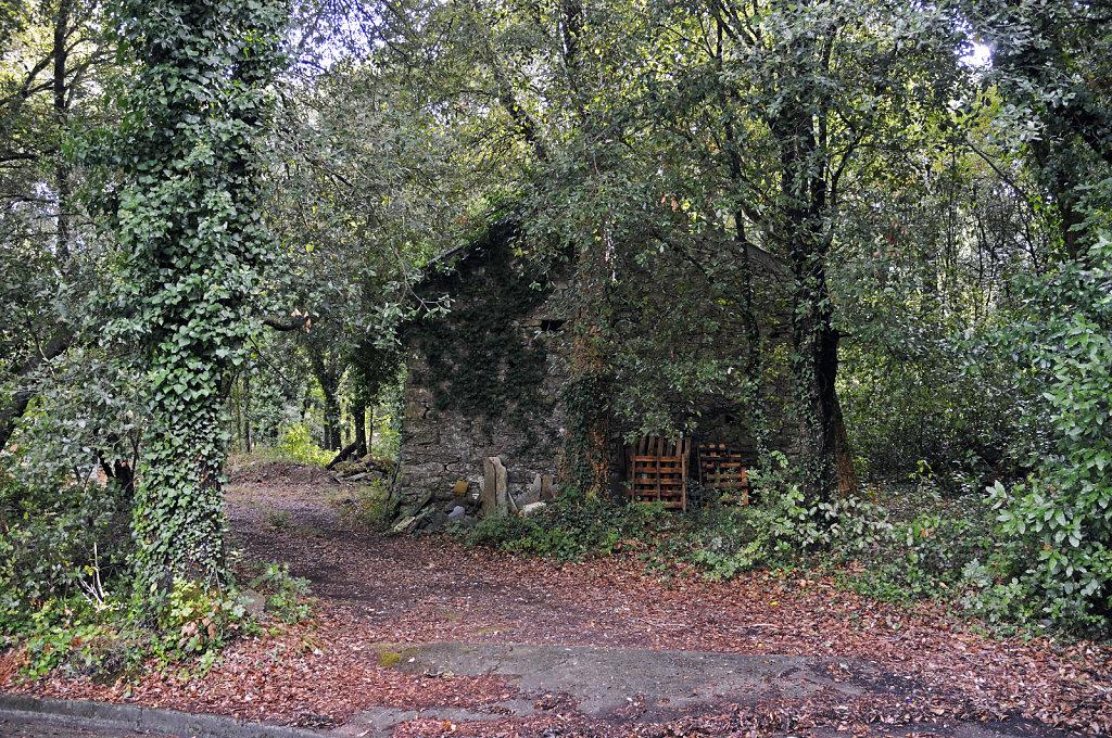 korsika - pietracorbara - an der landstraße