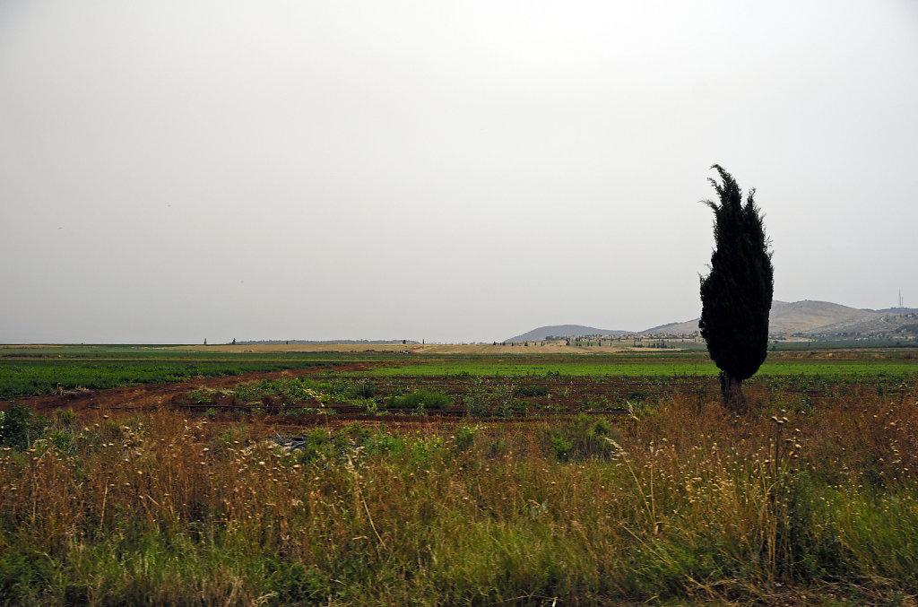 israel – haifa - unterwegs