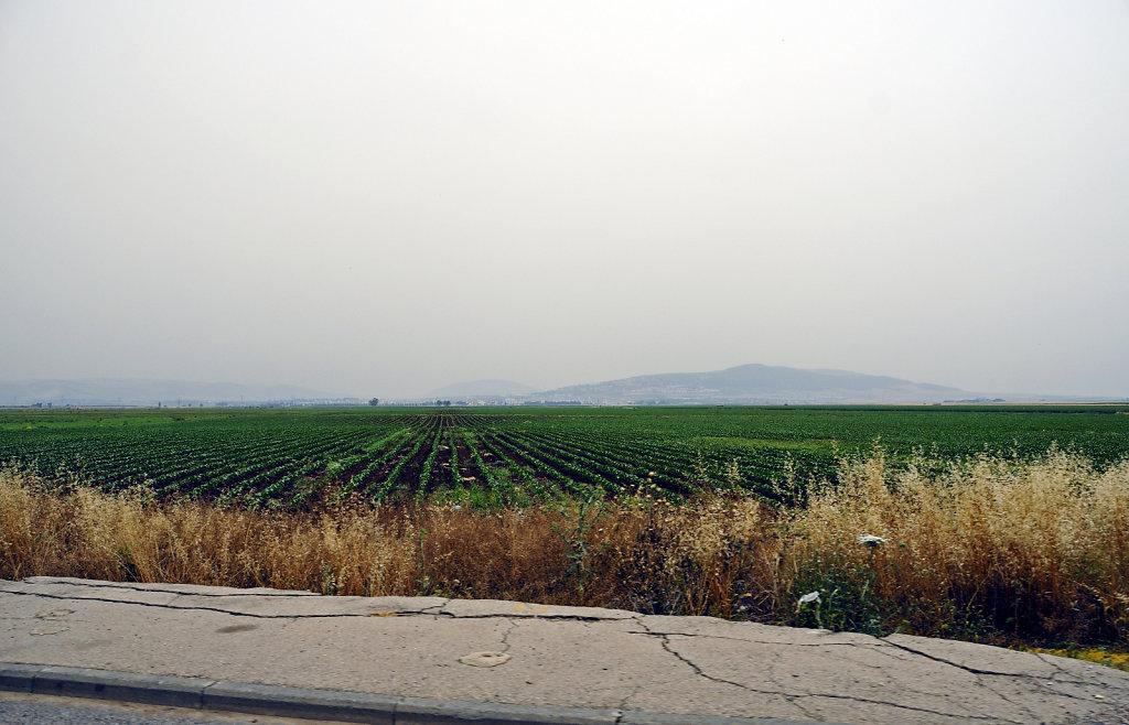 israel – haifa - unterwegs teil 3