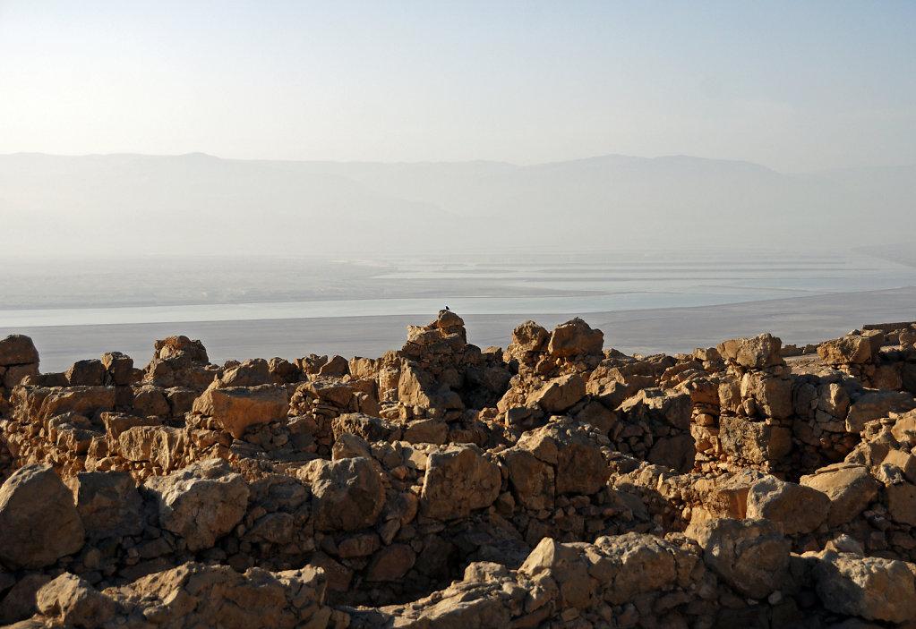 israel- totes meer - masada  - pause