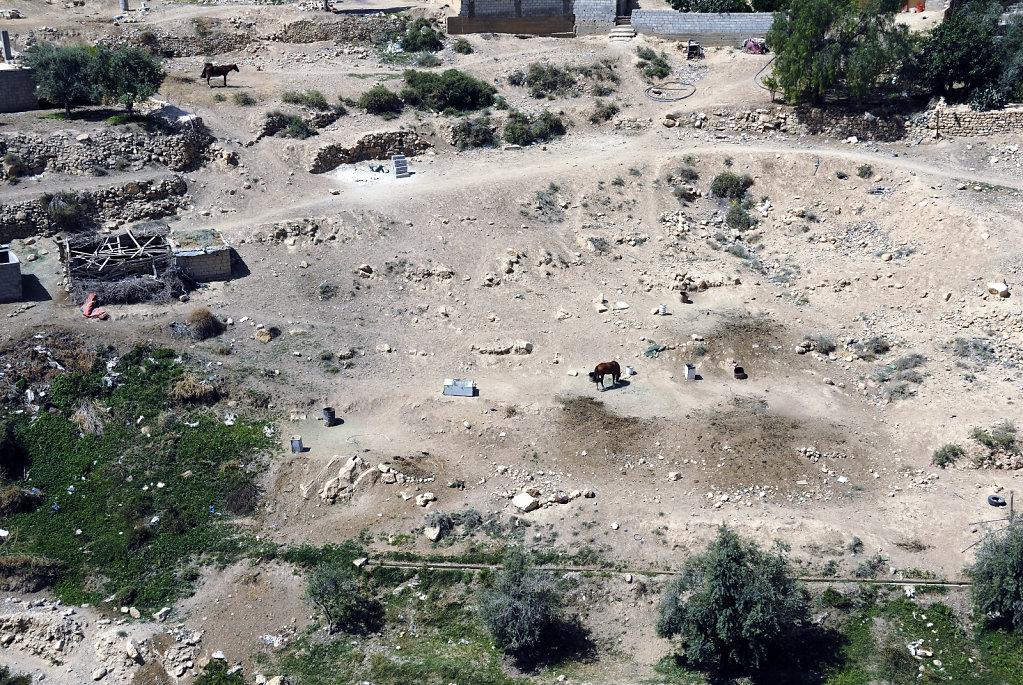jordanien - wadi musa (06)