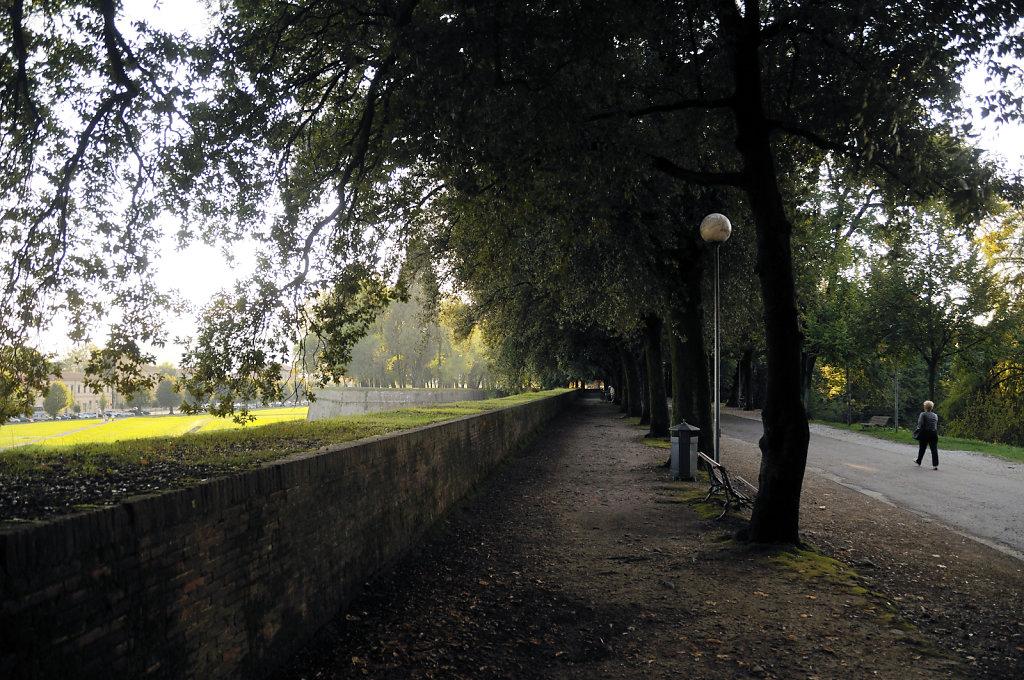 italien- lucca - auf dem wall