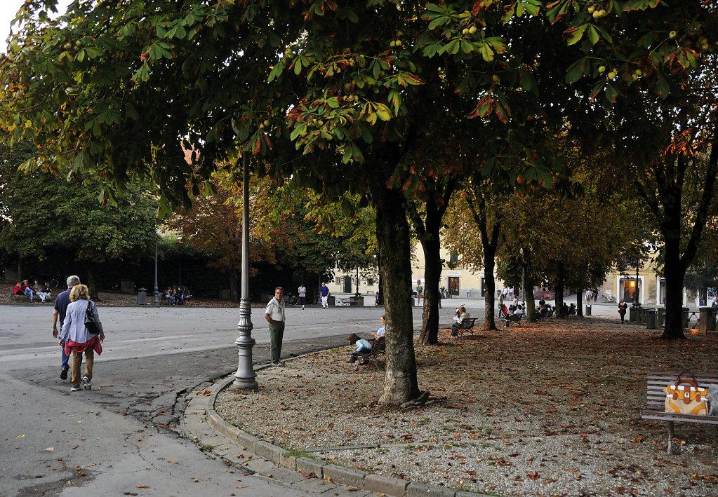 italien- lucca - unter bäumen