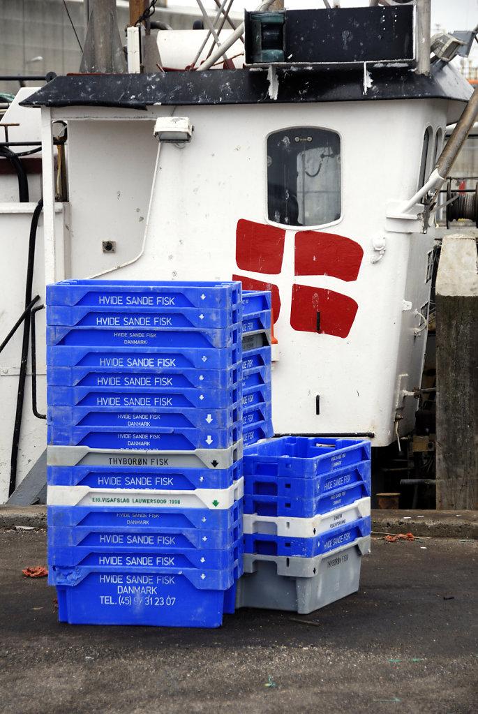 dänemark - ringkobing fjord - hvide sande (06)