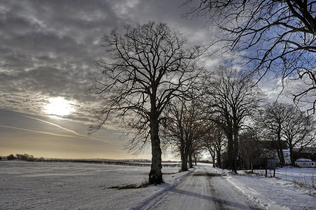 wintersonne (02)