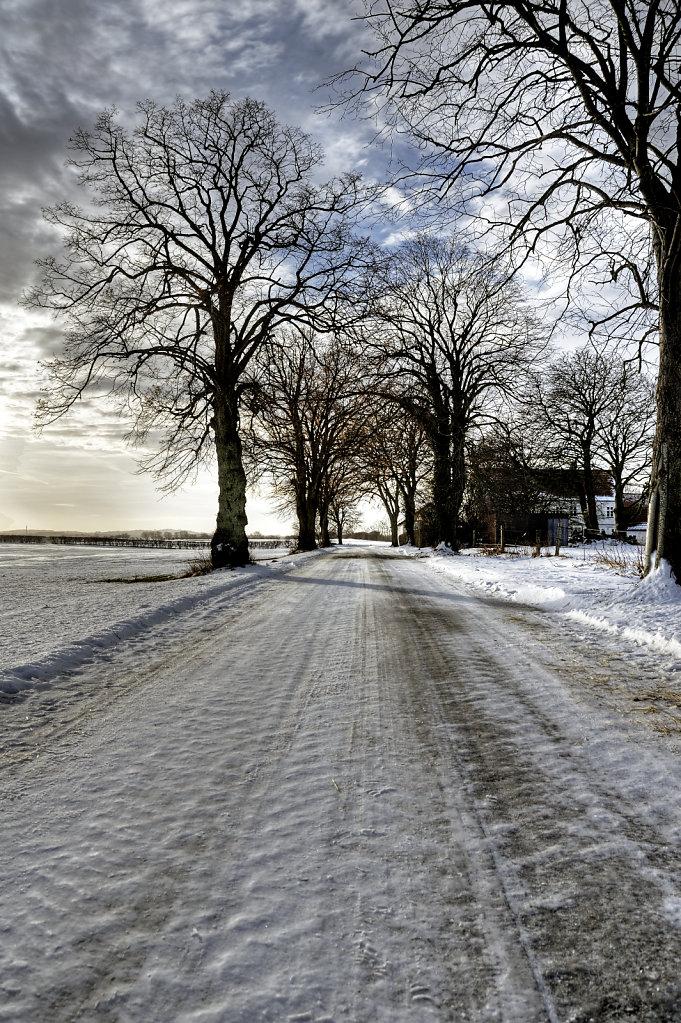 winterlandschaft (04)