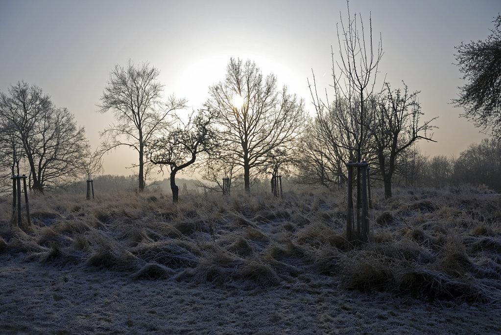 wendland (25) - im winter