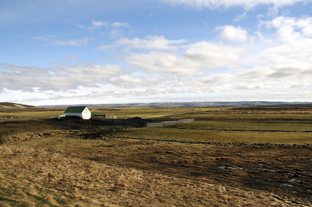 island – zwischen þingvellir und gullfoss (02)