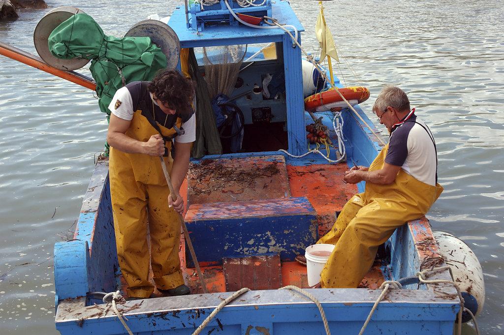 salent (34)  - die fischer