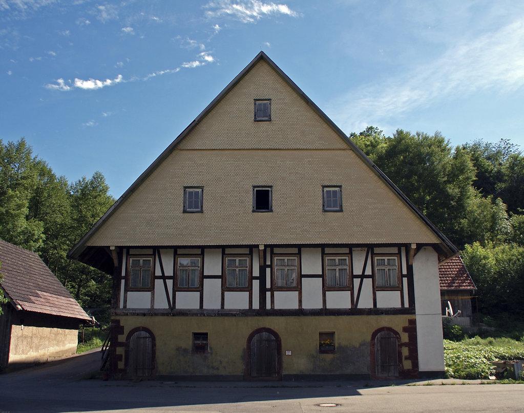 schwarzwald (11)