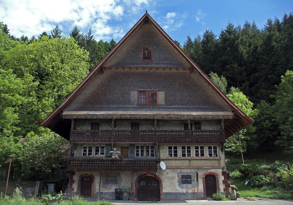 schwarzwald (16)