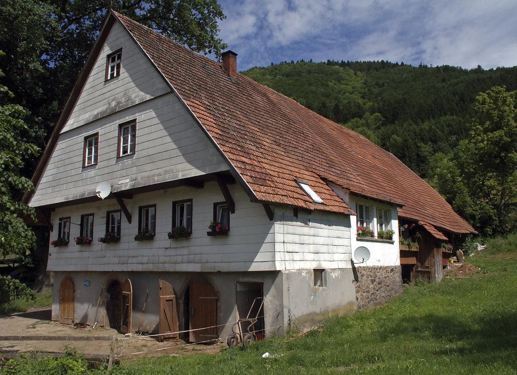 schwarzwald (21)