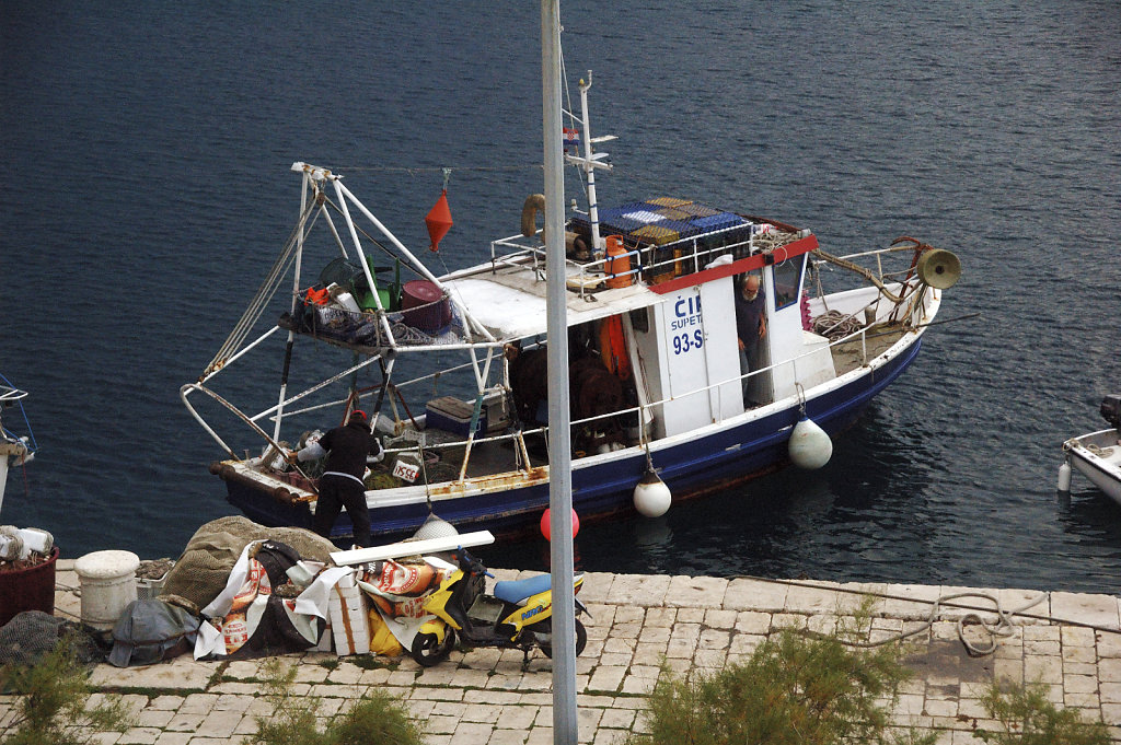 kroatien (38) - leinen los