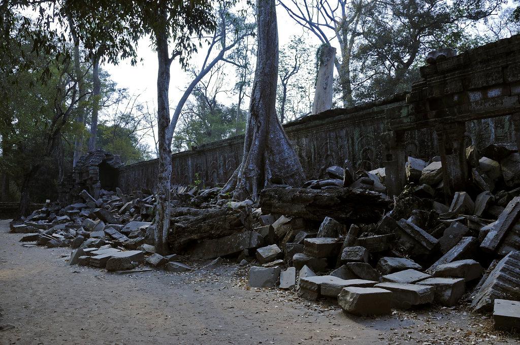 kambodscha - tempel von anghor - ta prohm (17)