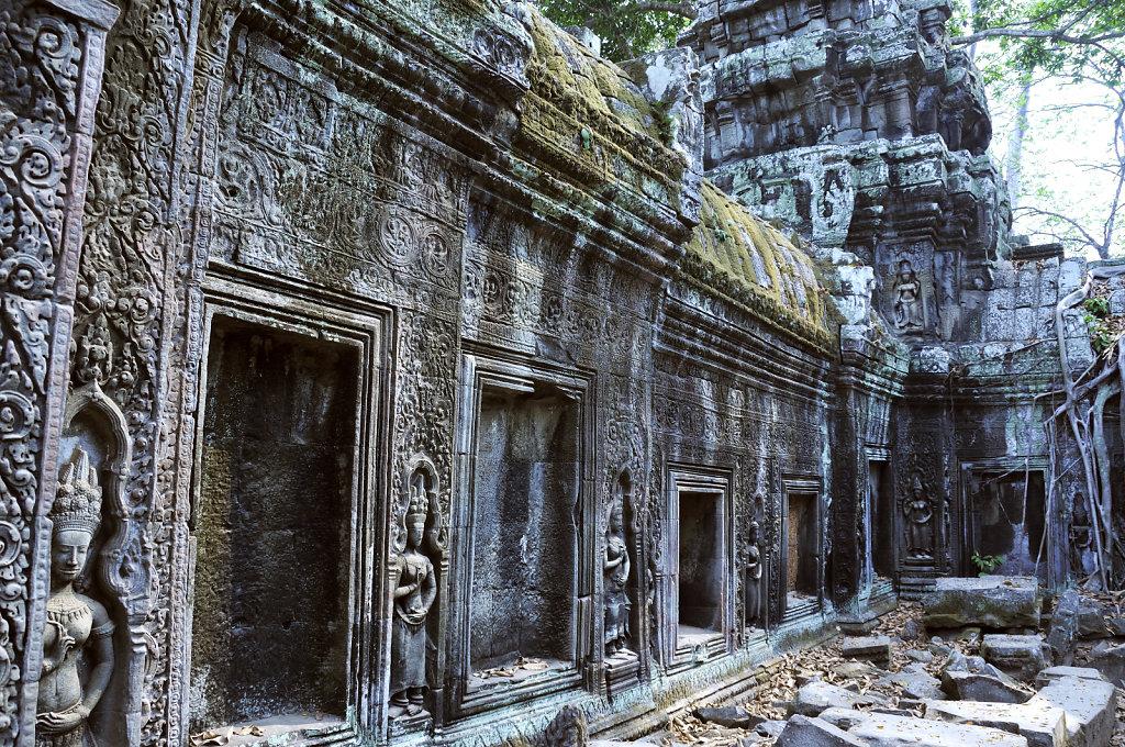 kambodscha - tempel von anghor - ta prohm (43)