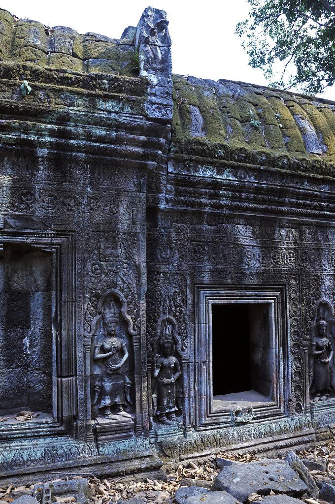 kambodscha - tempel von anghor - ta prohm (44)