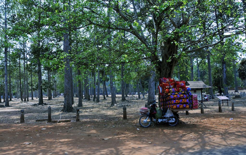 kambodscha - tempel von angkor - srah srang (13)