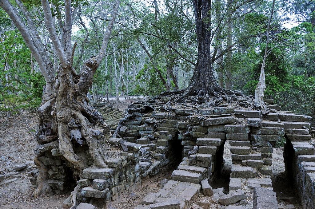 kambodscha - tempel von anghor - ta keo (29)
